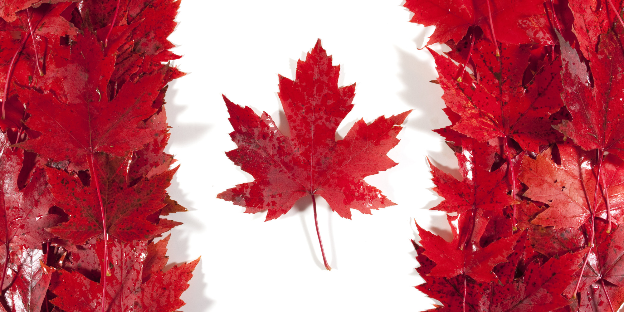 Their flag is actually made of leaves. Fact.