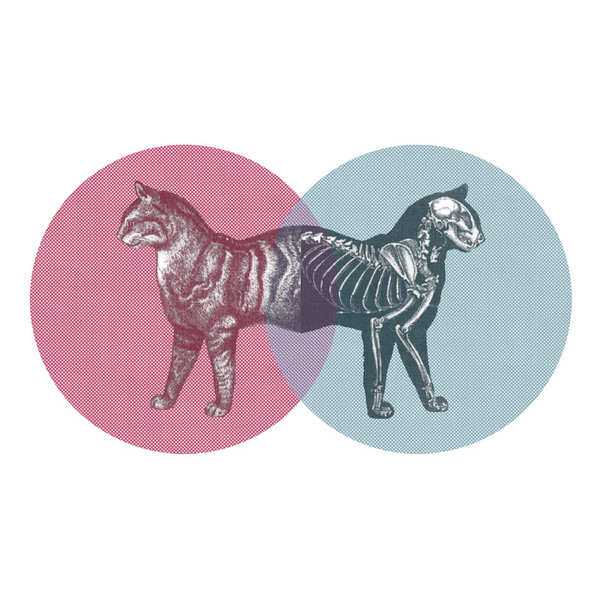 The answer to what Schrödinger and Venn would have talked about had they ever met.
