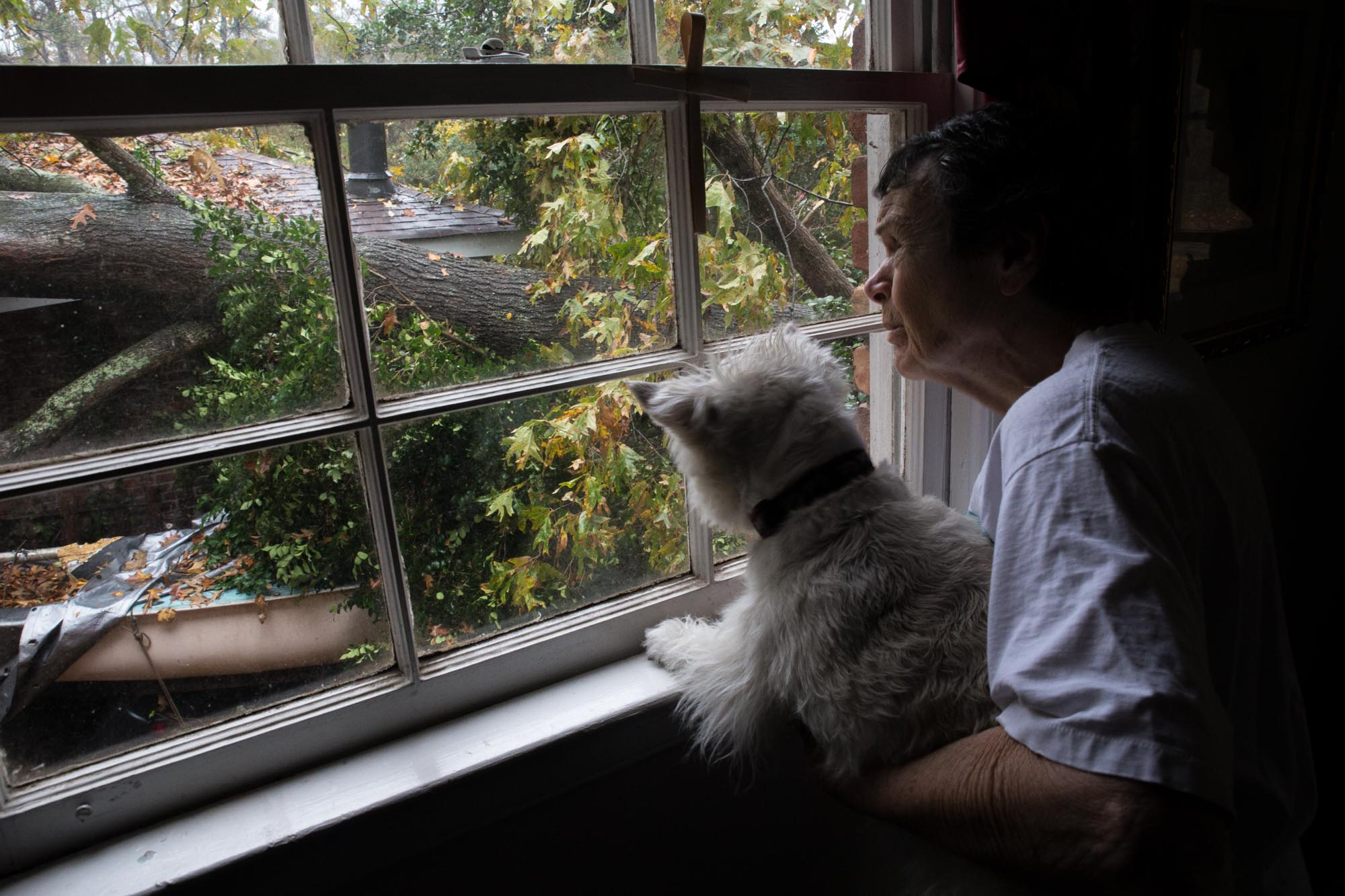 88-year-old Martha Jane Jones, holding her dog, Molly, poses for a photo while looking out at a tree that fell on her neighbors home, Wednesday, Nov. 30, 2016, in Atlanta. The National Weather Service says a tornado has touched down near Atlanta as heavy storms continue to sweep through parts of the southern region. Branden Camp for AJC