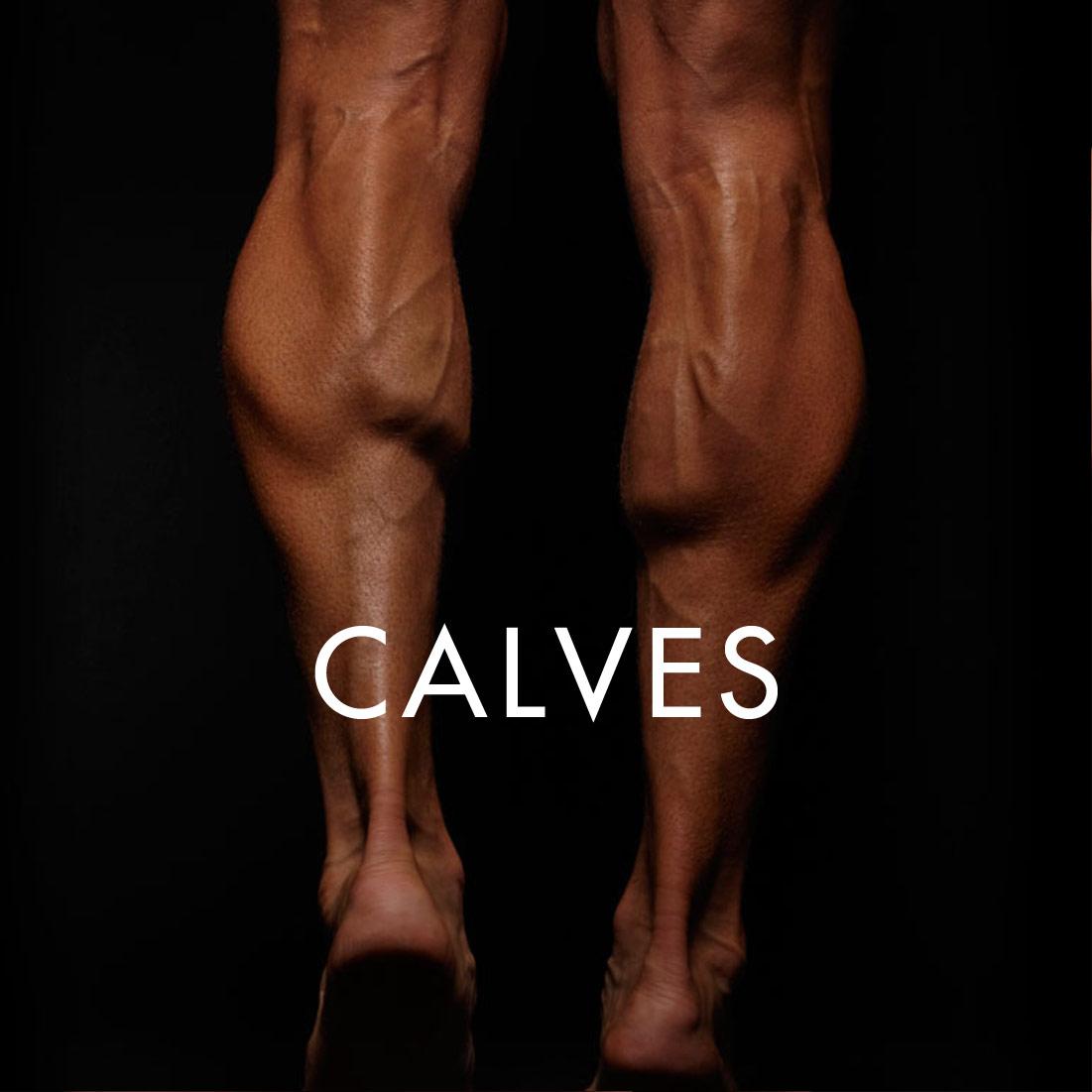 CALVES_SQ