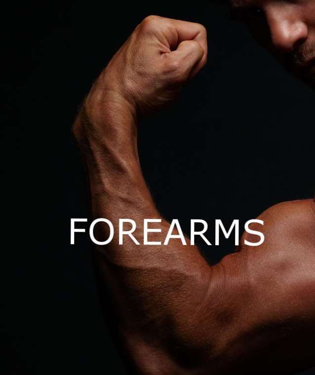 FOREARMS_SQ