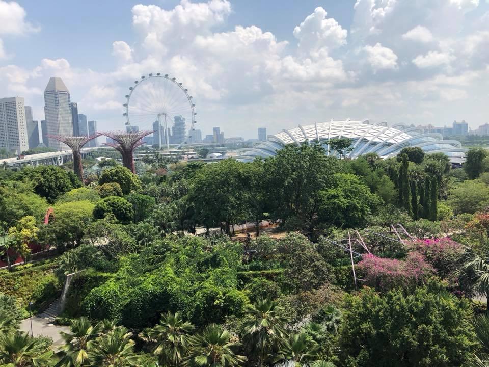 Singapore 10.jpg
