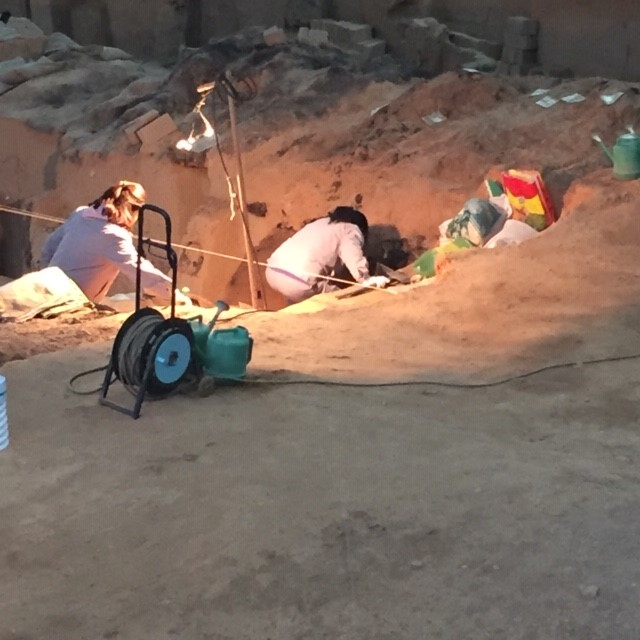 Ongoing excavation at the Terracotta Warrior site