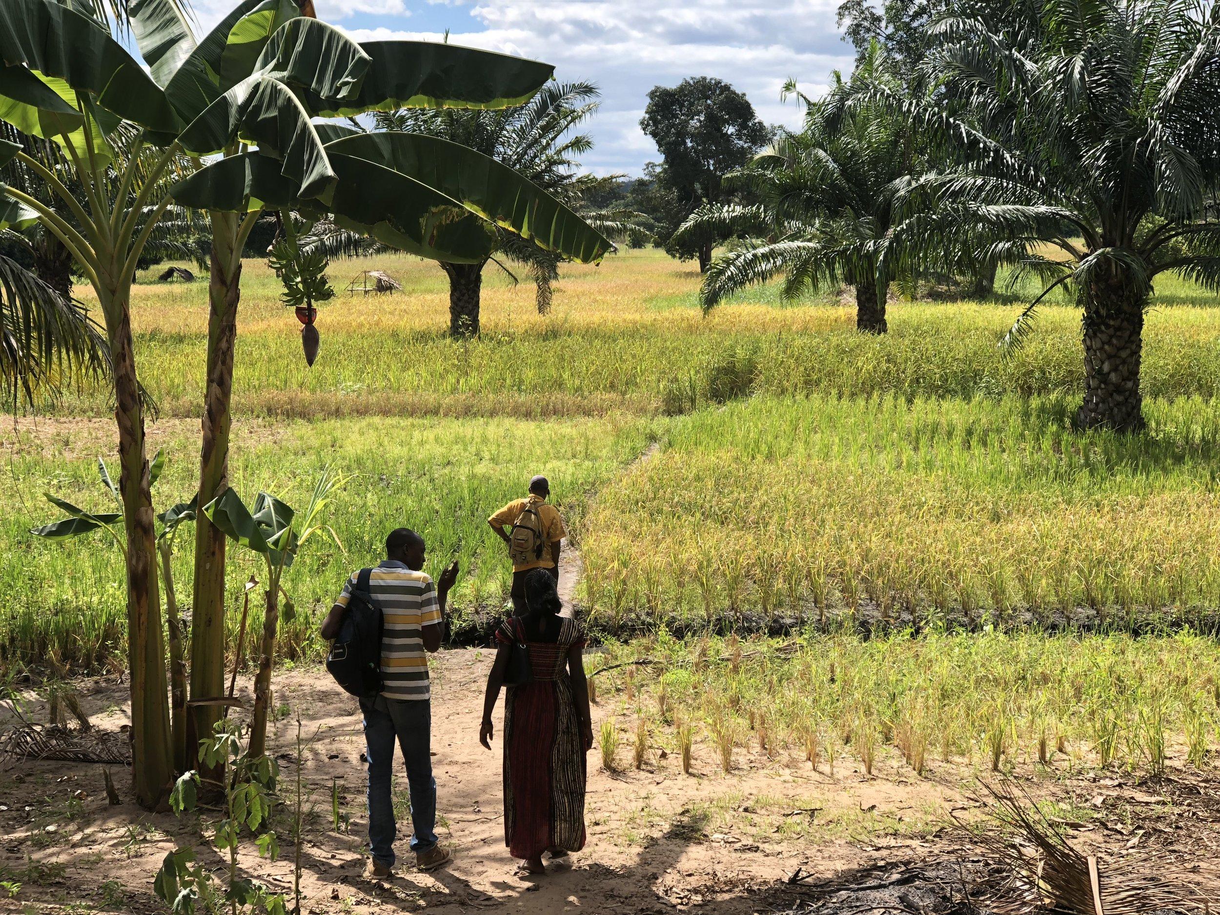 Utenfor en landsby I Rufiji, Tanzania. Foto: Mia Blakstad