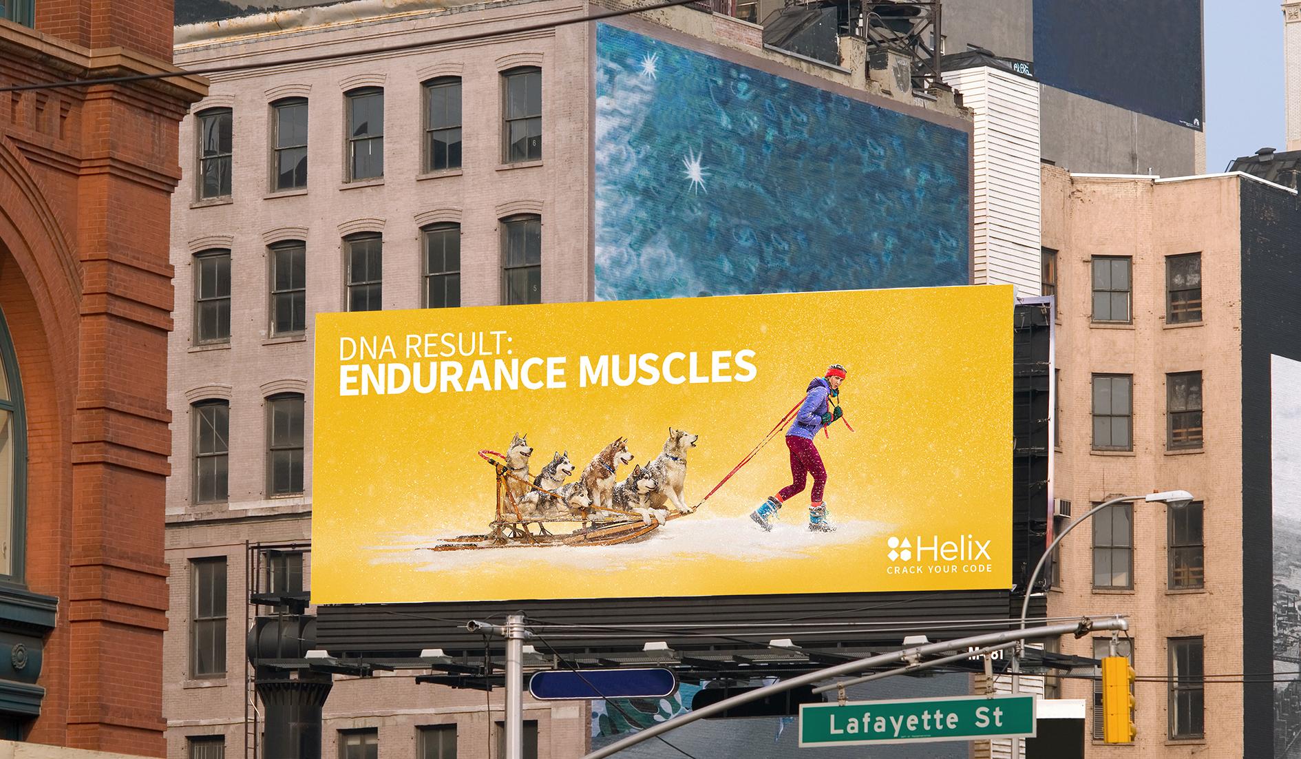 billboard 3.jpg