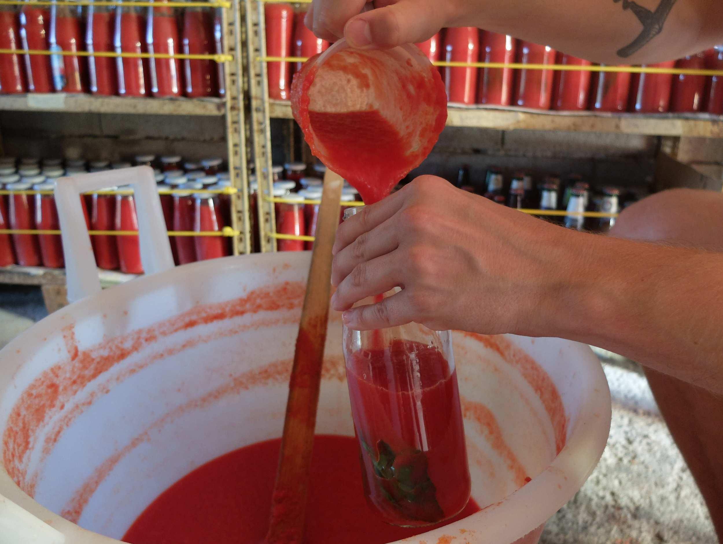 Filling the bottles of salsa semplice