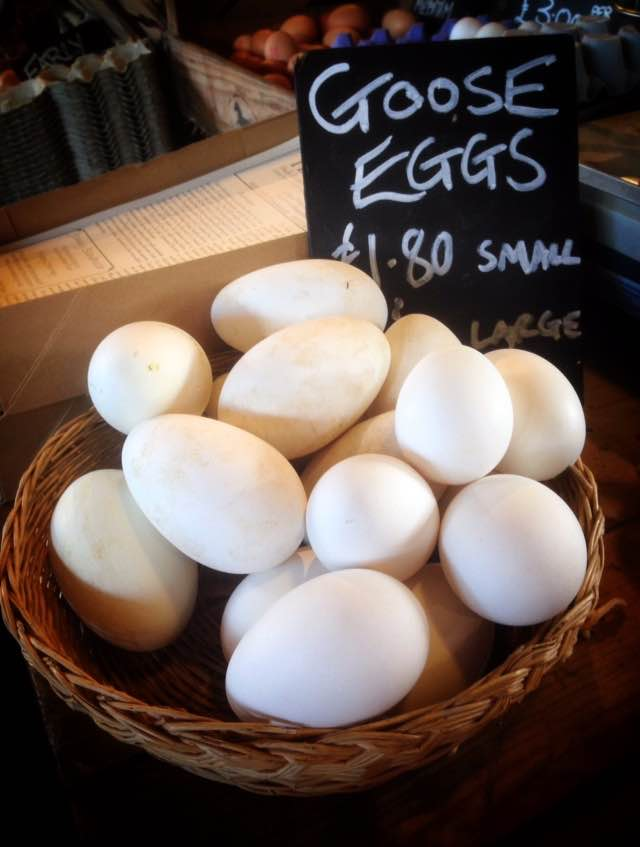 Goose eggs are available around May time