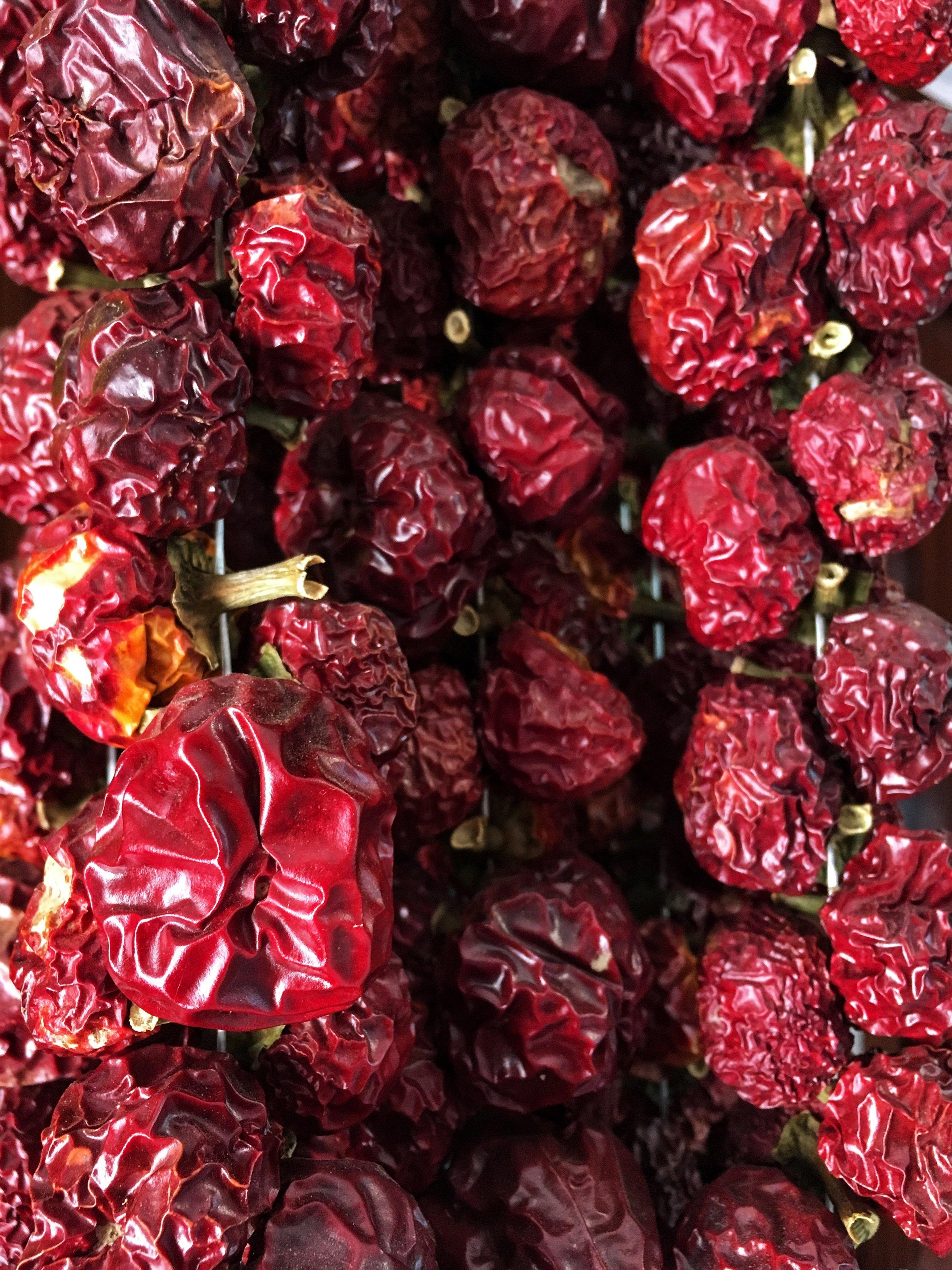 The paupaulo pepper