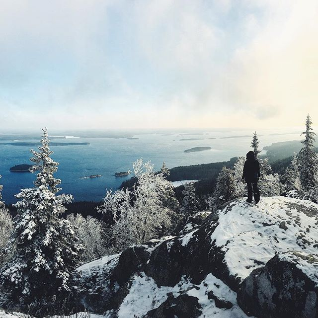 Winter is coming to Finland ❄️ 🔜🇫🇮This is from Koli last year right after the first snow landed. If you are interested in visiting Koli check my article. Link 👉🏻 Bio