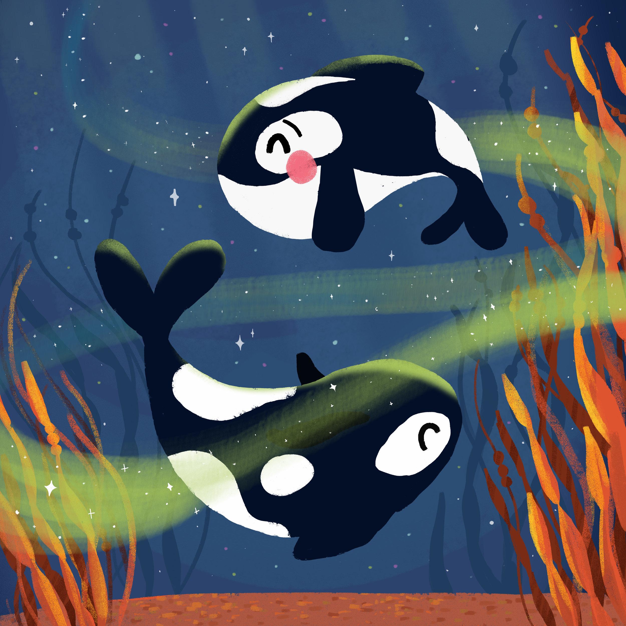 killer-whales-pair.jpg