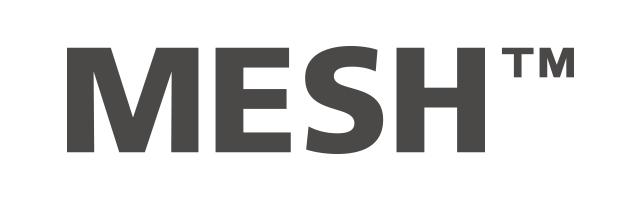 mesh.png