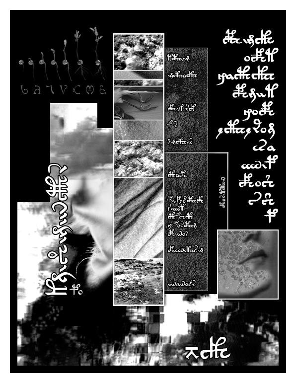 Page 05 copy.jpg