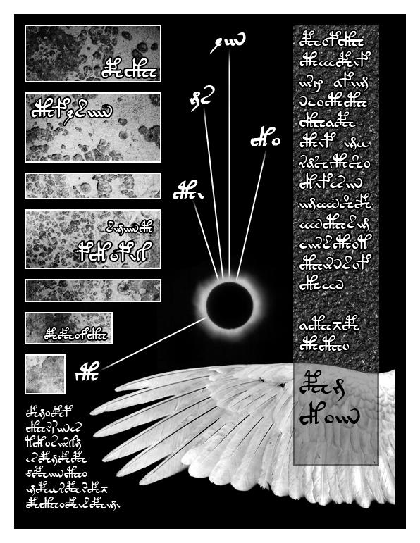 Page 06 copy.jpg