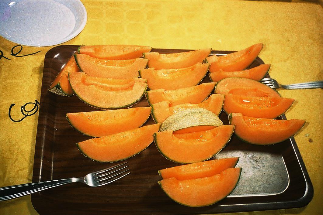 melon copy.jpg