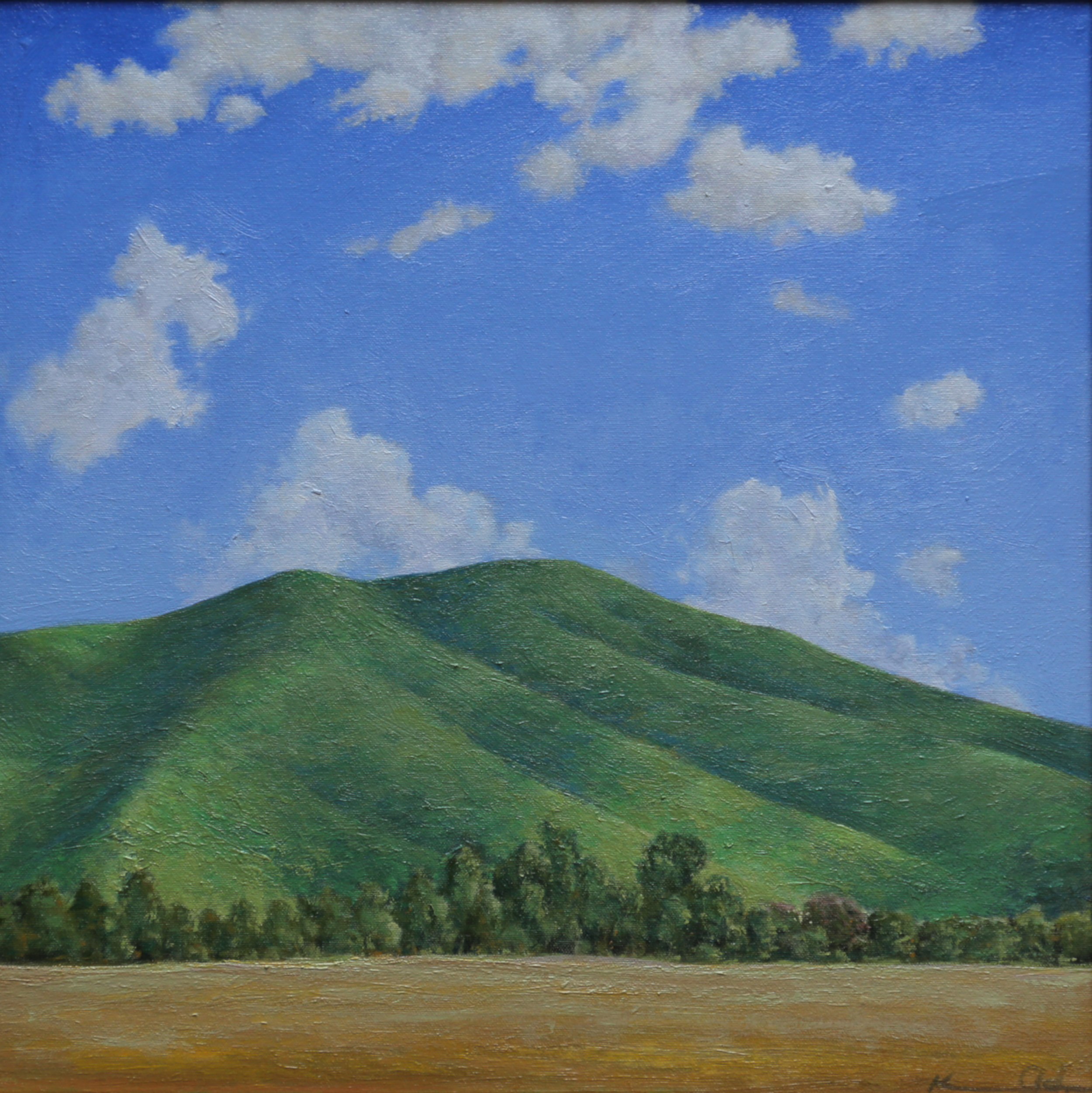 Across the Field  20 X 20 oil on canvas