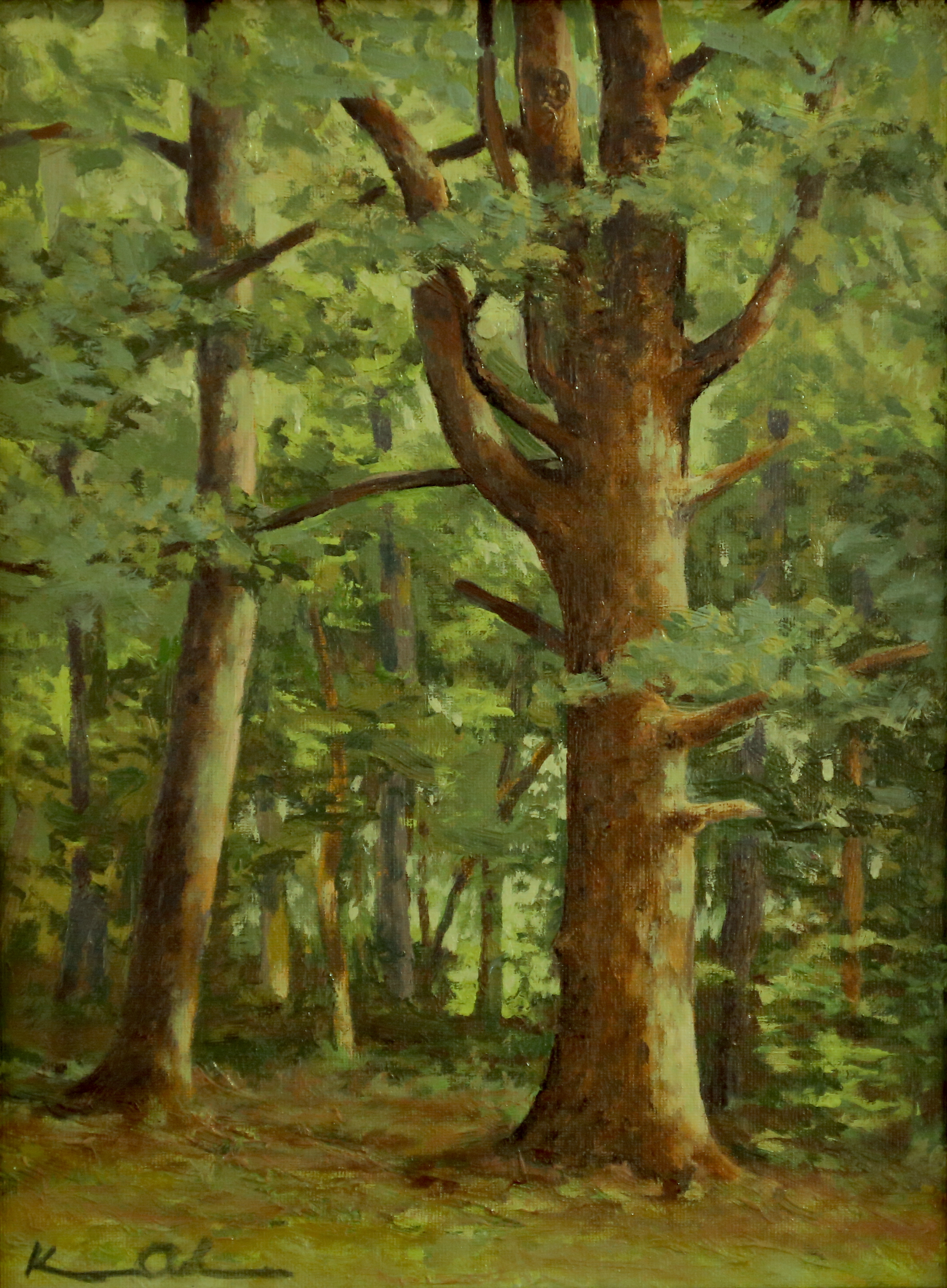 Among The Pine 9 X 12 oil on panel