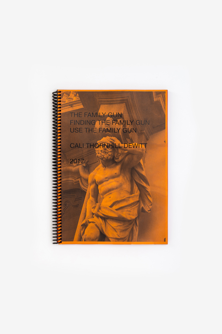 CALI THORNHILL DEWITT - FINDING the family gun  142 PAGES 21 X 29.7 CM  EDITION OF 200  OMMU 2017  €25  add to cart