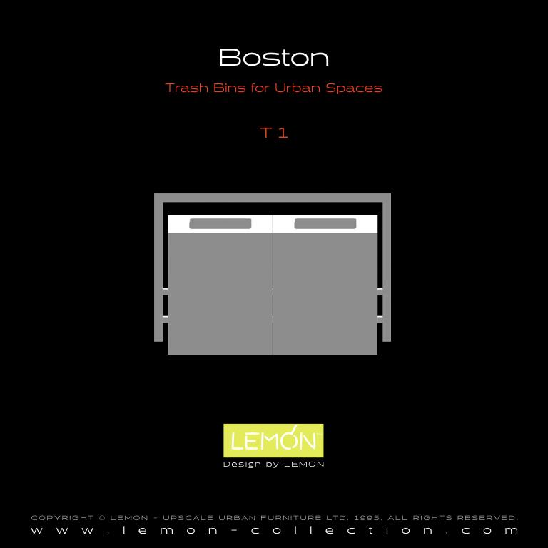 Boston_LEMON_v1.004.jpeg