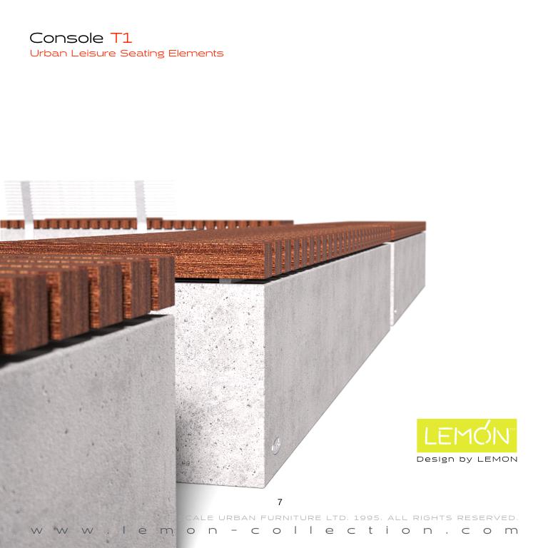 Console_LEMON_v1.007.jpeg