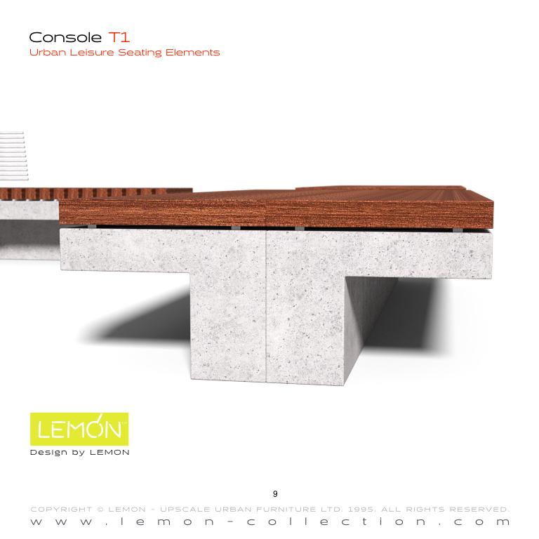 Console_LEMON_v1.009.jpeg