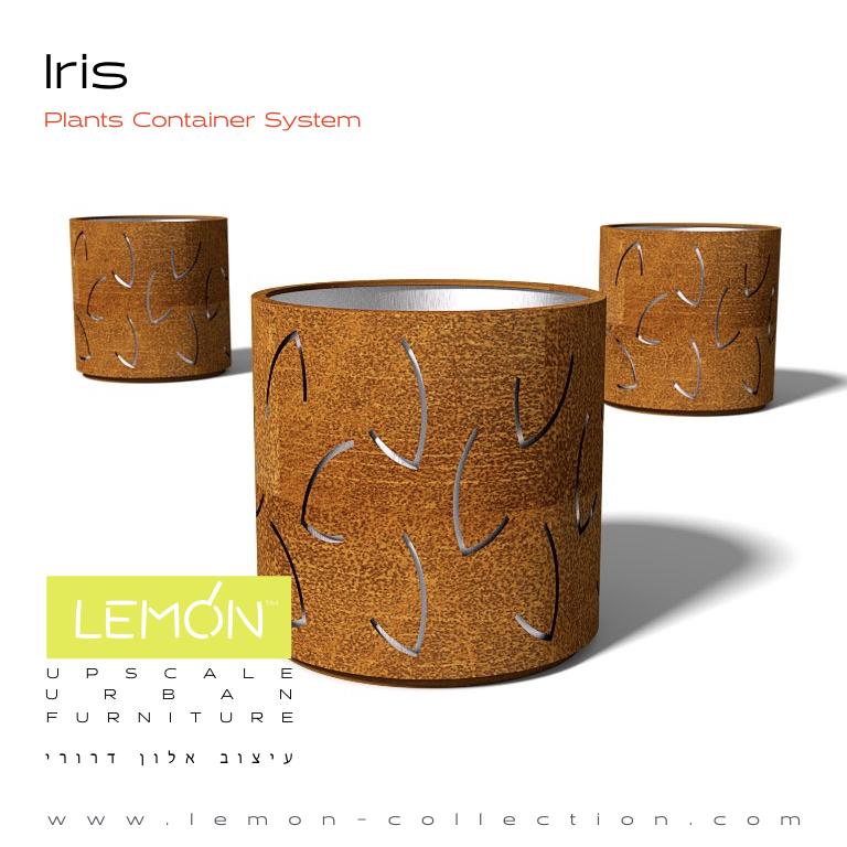 Iris_LEMON_v1.001.jpeg
