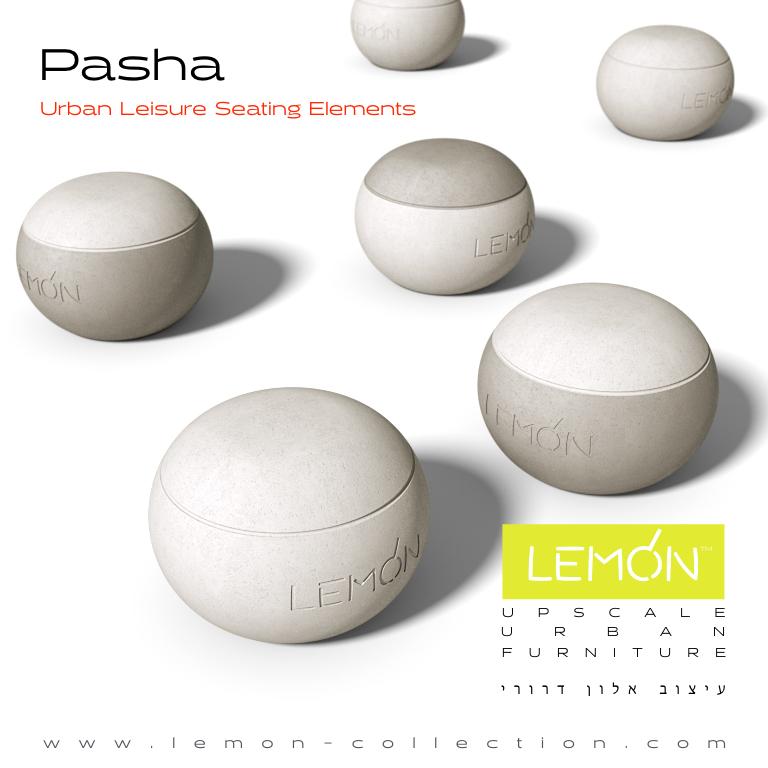 Pasha_LEMON_v1.001.jpeg