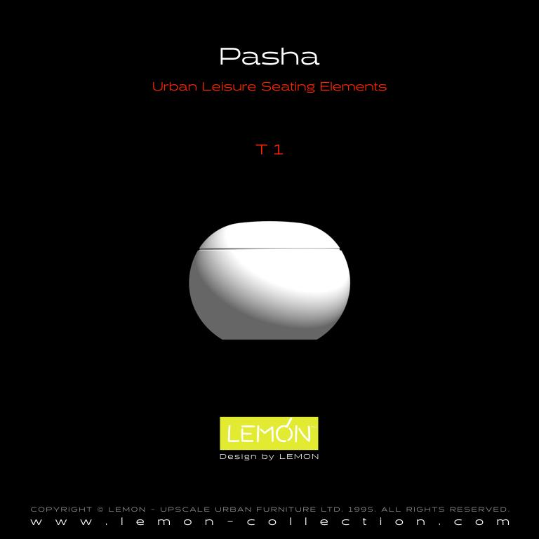 Pasha_LEMON_v1.004.jpeg