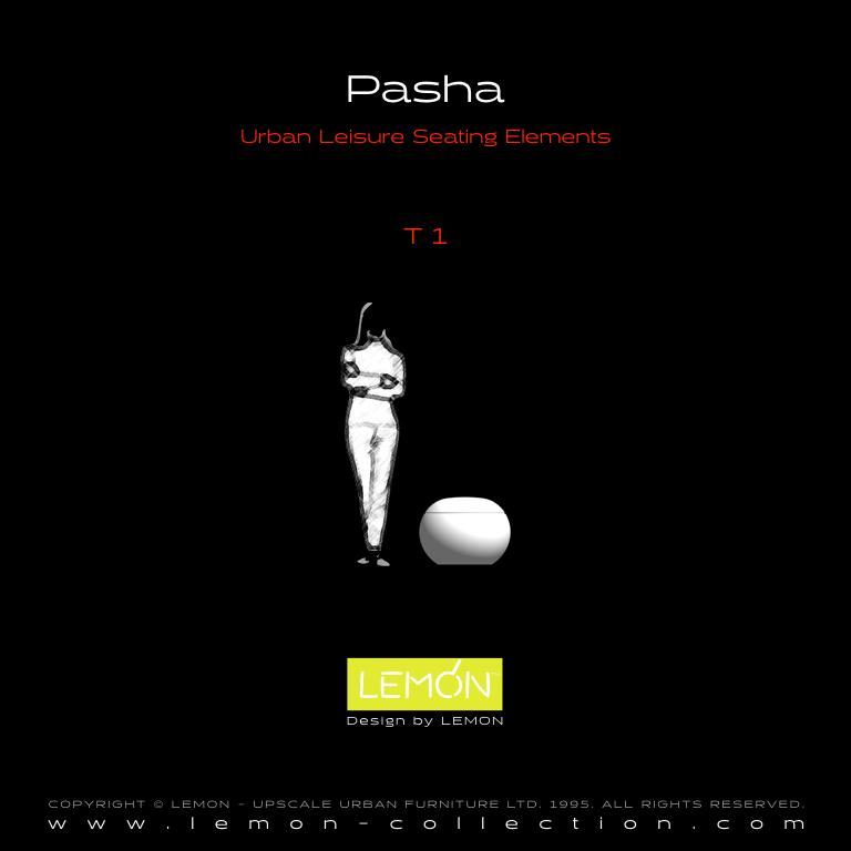 Pasha_LEMON_v1.005.jpeg