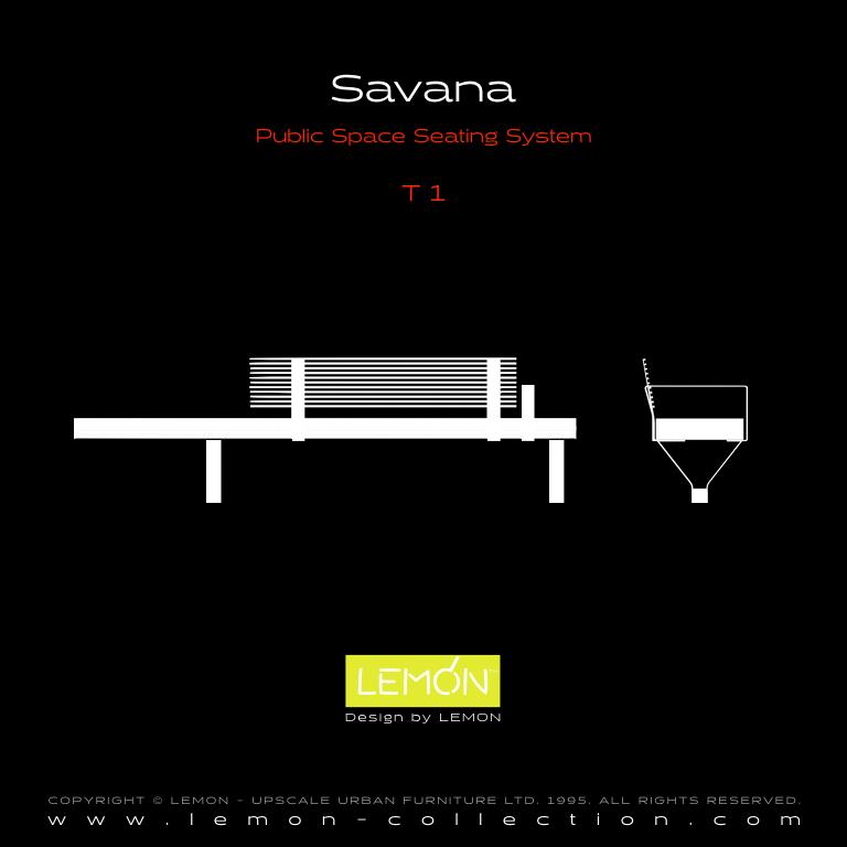 Savana_LEMON_v1.004.jpeg