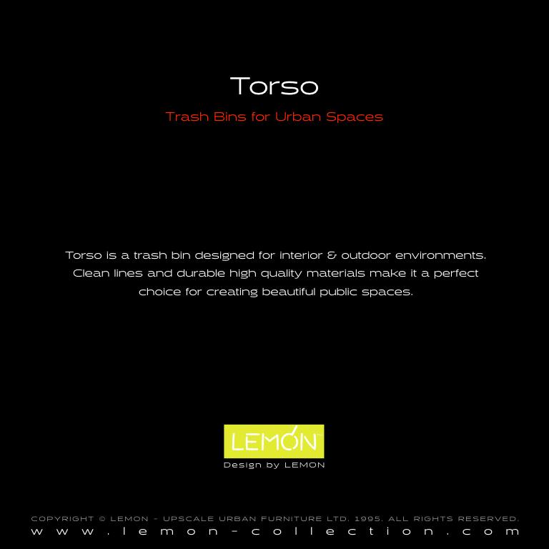 Torso_LEMON_v1.003.jpeg