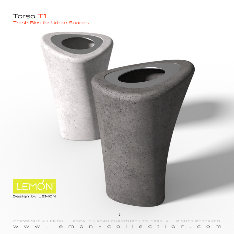 Torso_LEMON_v1.005.jpeg