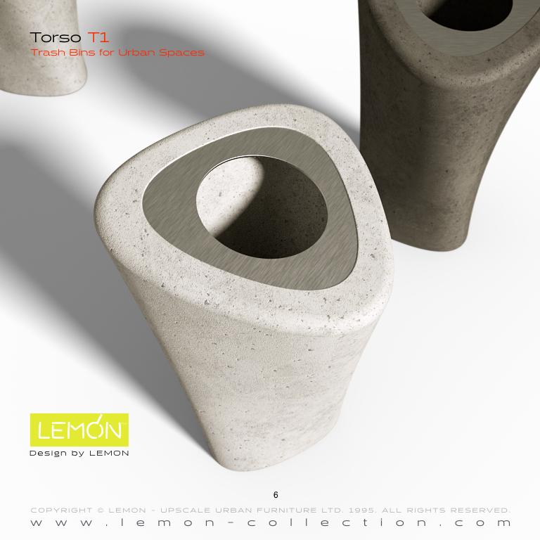 Torso_LEMON_v1.006.jpeg