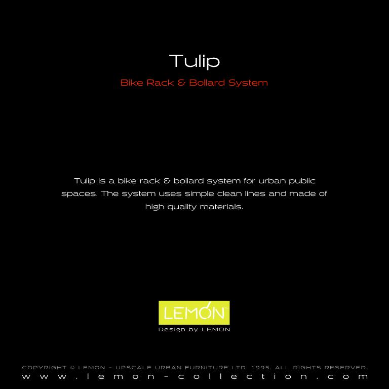 Tulip_LEMON_v1.003.jpeg