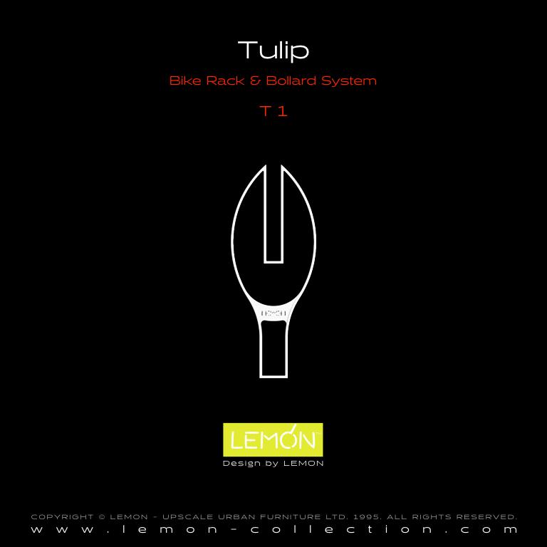 Tulip_LEMON_v1.004.jpeg