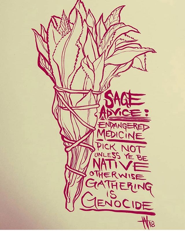 "☝🏽✨🌱✊🏽// 🎨: @weshoyot // ""Take some #sageadvice @sephora and @wholefoods : white sage is endangered. Your ""witch kits"" are exploitative. Your selling of indigenous culture is contributing to cultural genocide and further endangerment of this plant in it's native environment.  Here's some SAGE ADVICE: YOU ARE COMMERCIALISING CULTURE. UNLESS YOU ARE NATIVE AND HAVE BEEN RAISED WITH TRADITIONAL KNOWLEDGE OF RESPECTING, GROWING, HARVESTING AND TENDING TO THIS PLANT, YOU HAVE ABSOLUTELY NO RIGHT TO USE IT OR BUY IT.  Our culture is not for sale. Our medicine is not for your commoditization.  #SAGE #WHITESAGE #SEPHORA #WHOLEFOODS #NEWAGE #COMMERCIALISM #CAPITALISM #TRADITION #culturalappropriation #hippie #cleanse #genocide #smudge #weshoyot"""