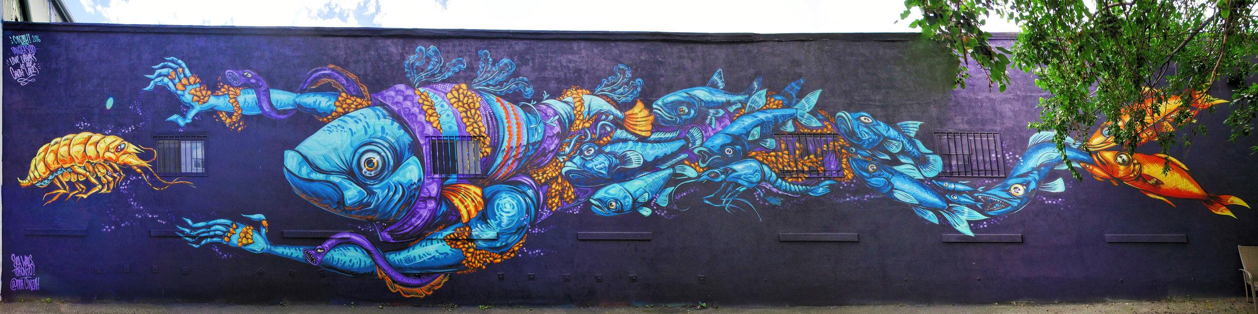 Cinzah (New Zealand)