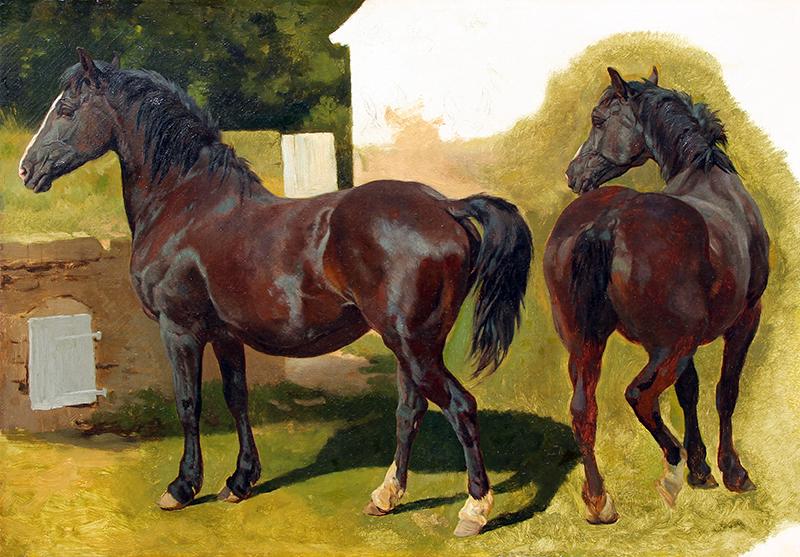 Henry William Banks Davis  | Studies of a Welsh Cobb