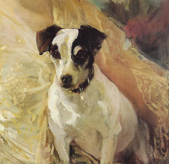 JOAQUÍN SOROLLA Y BASTIDA  Portrait of a Jack Russell   Oil on canvas 18 x 18 inches (45.7 x 45.7 cm.)  SOLD