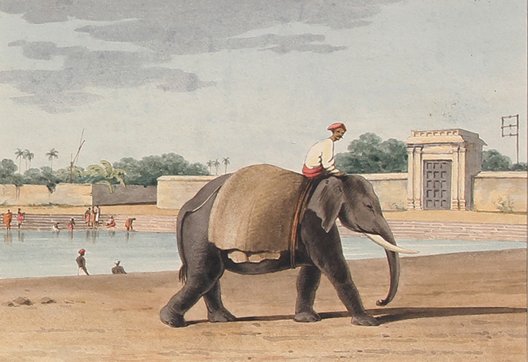 JOHN GANTZ    An Elephant by the River, Madras   Watercolor on paper 6½ x 9¼ inches (16.7 x 23.5 cm)  SOLD