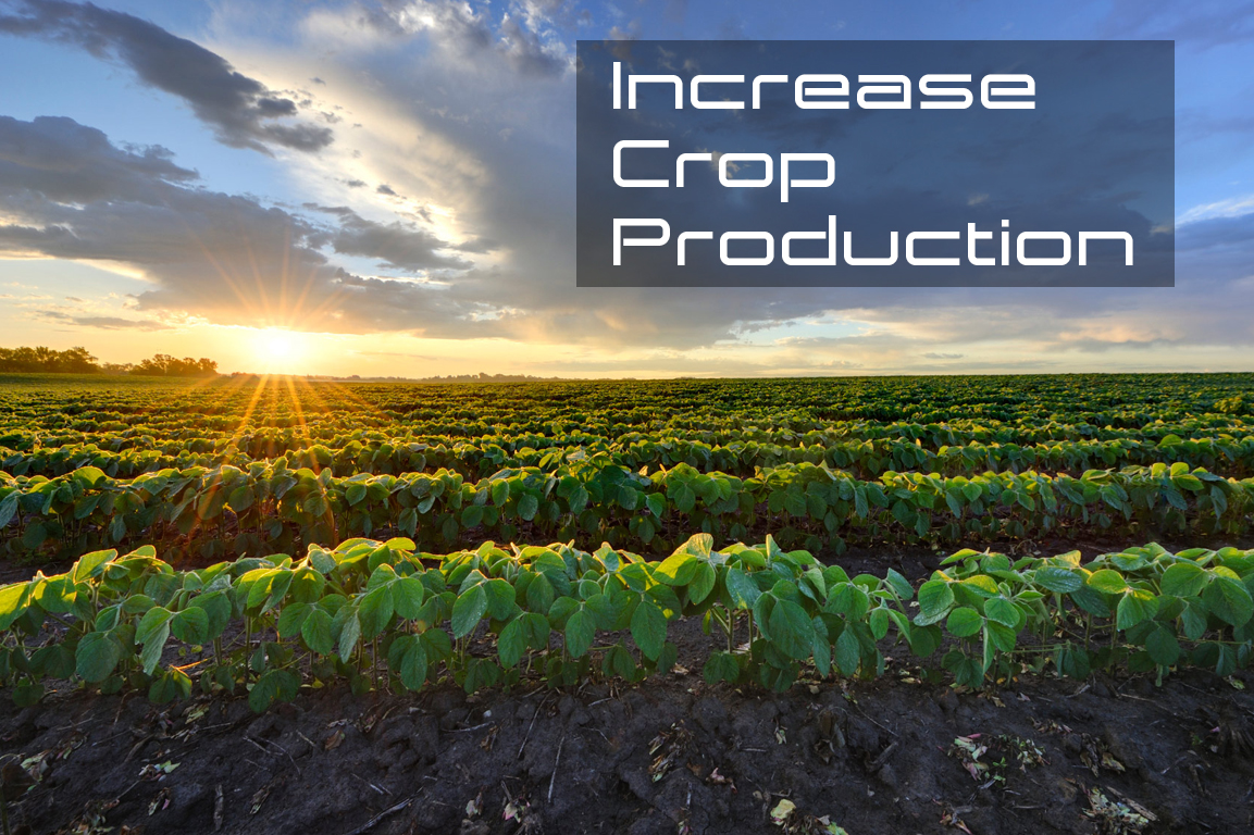 Increase Crop Production.jpg