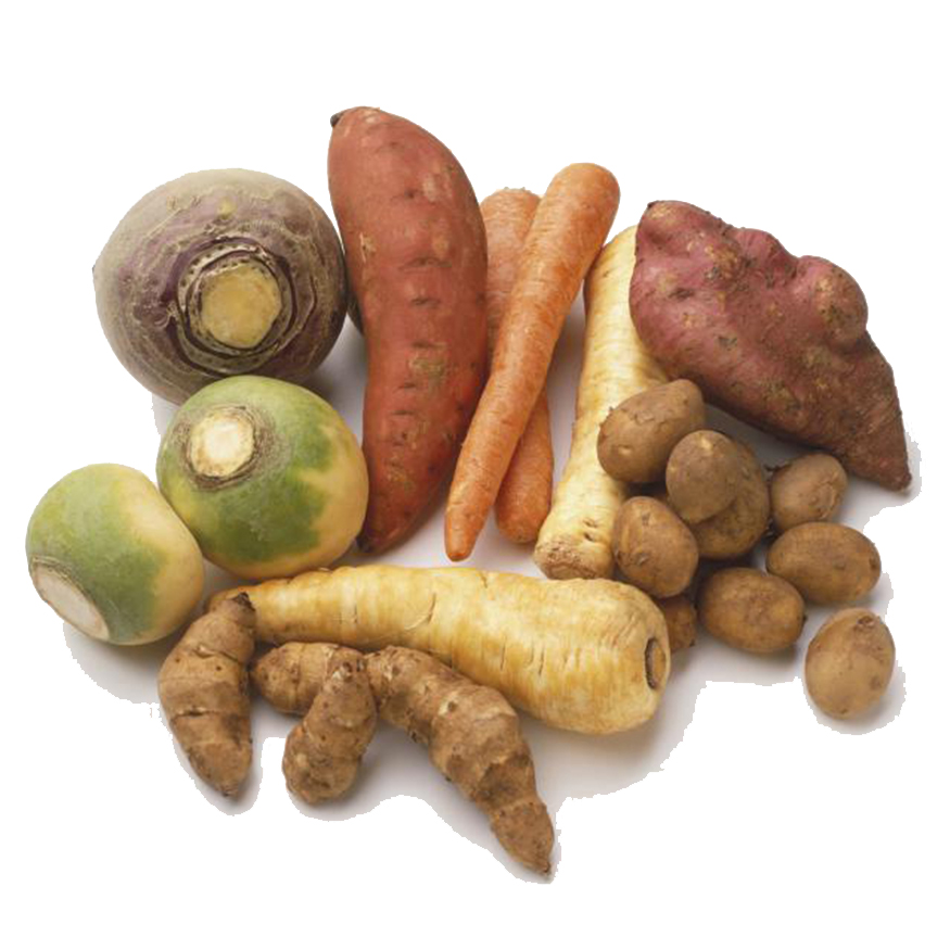 Root Vegetables 2.5x2.5.jpg
