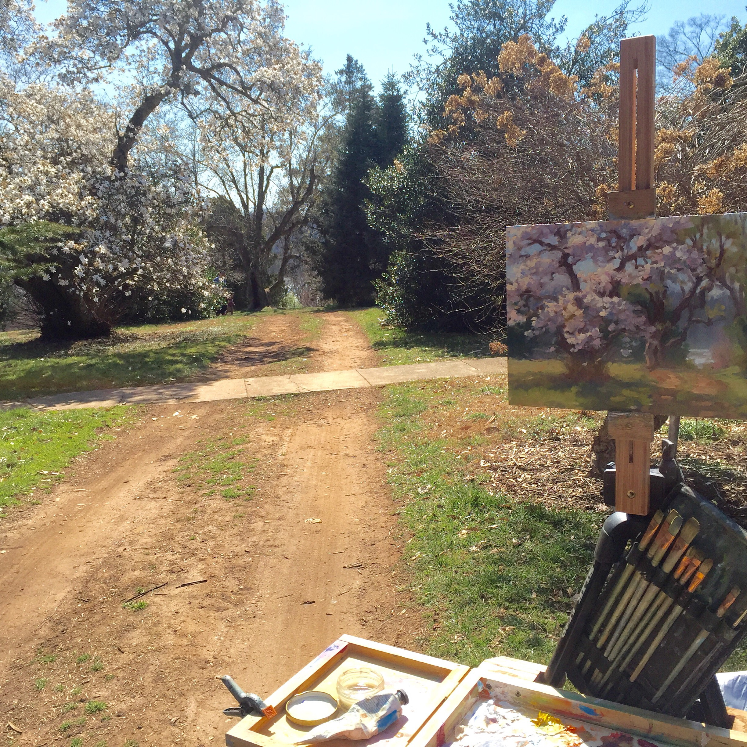 My plein air painting in process