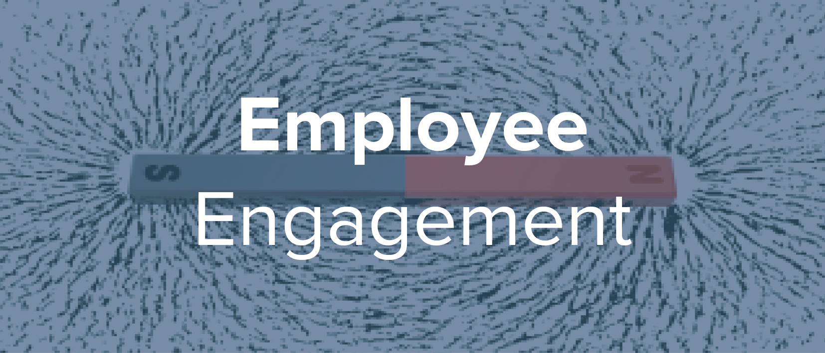 We help leaders and managers develop practical strategies and tools to promote outstanding employee engagement and create cultures that rock.