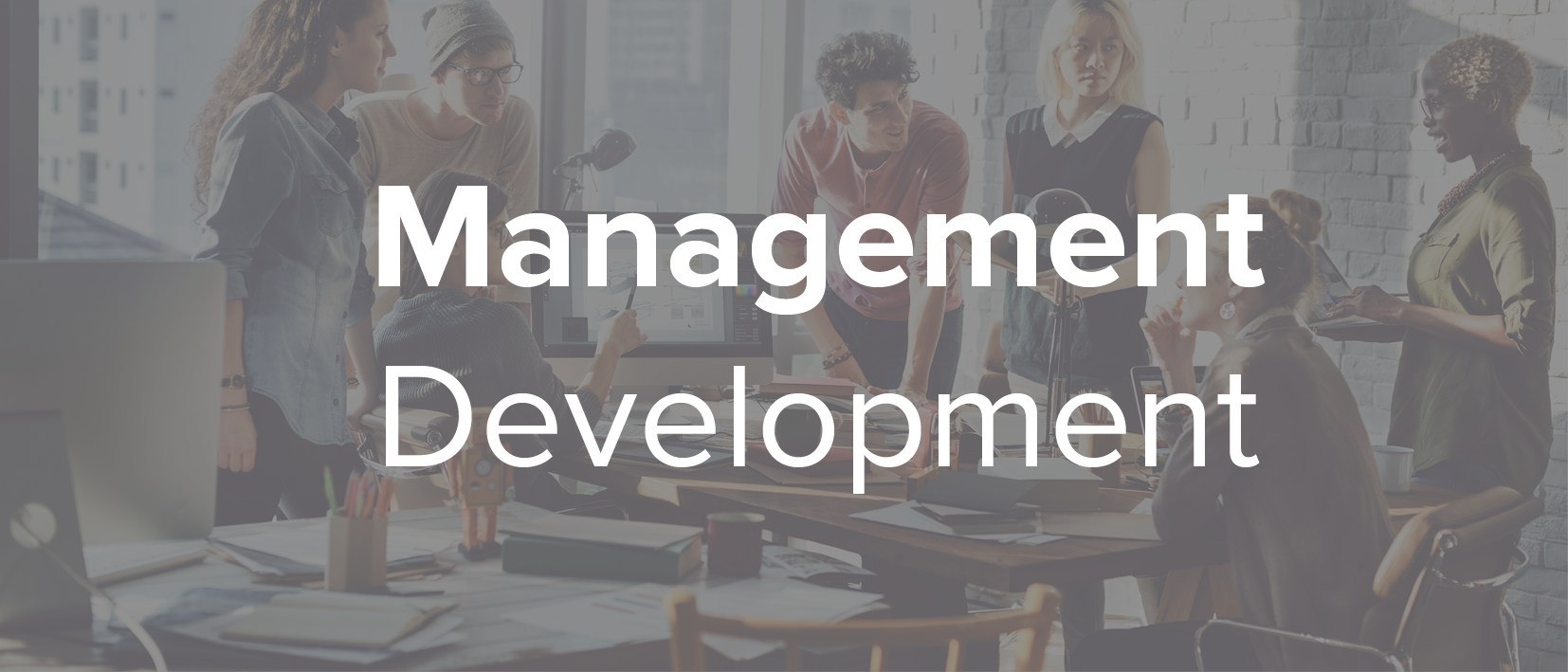 We help managers to build skills and weave together the processes and the humanity of great management, to create high-performing organisations.