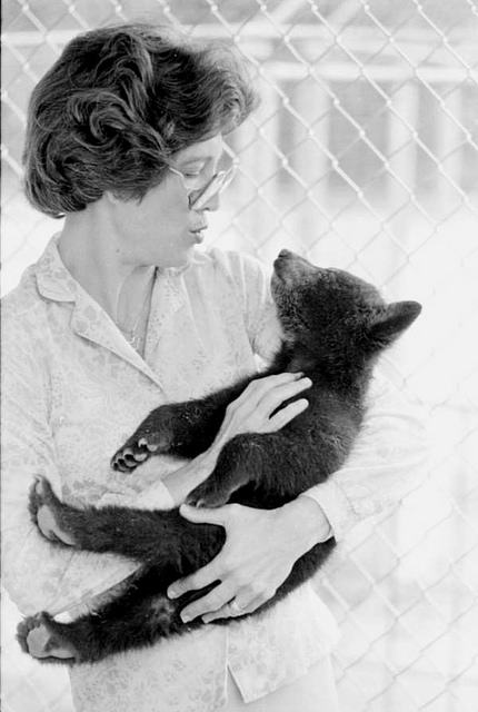 Florida Memory : Title: Bear cub with Betsy Knight - Blountstown Date: June 12, 1985 Physical descrip: 1 photoprint - b&w - 8 x 10 in