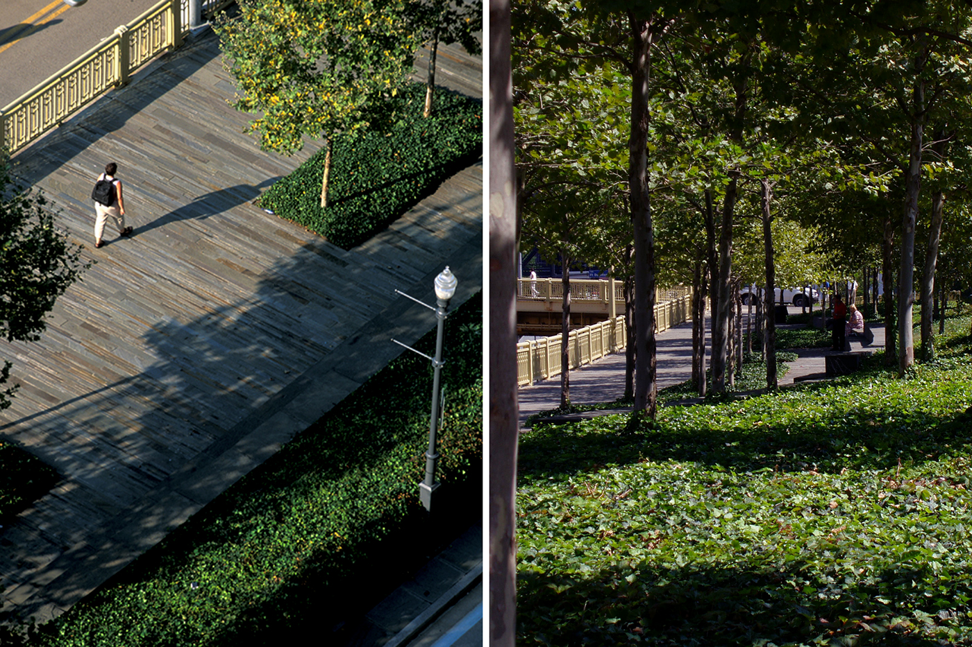 Upper park esplanade stone walkway  (left),  plantings and seating  (right)