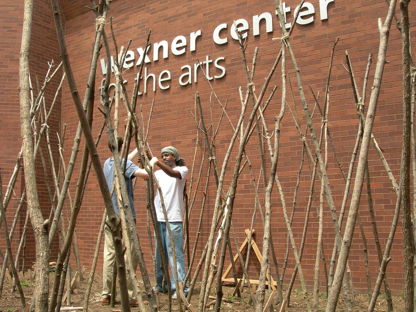 Setting bean poles , spring 2006