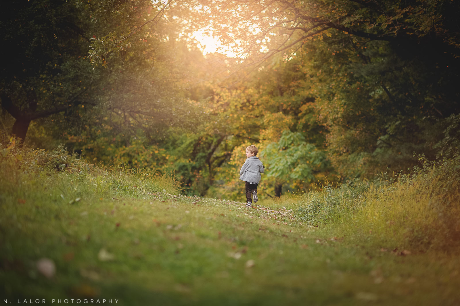 nlalor-photography-boy-fall-new-canaan-nature-center-photo-session-12.jpg
