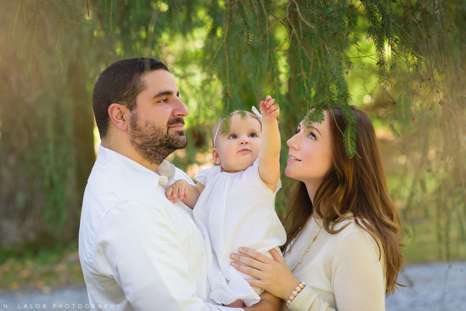 1-year old baby girl discovering the magical qualities of a pine tree. Lifestyle family photo by N. Lalor Photography.