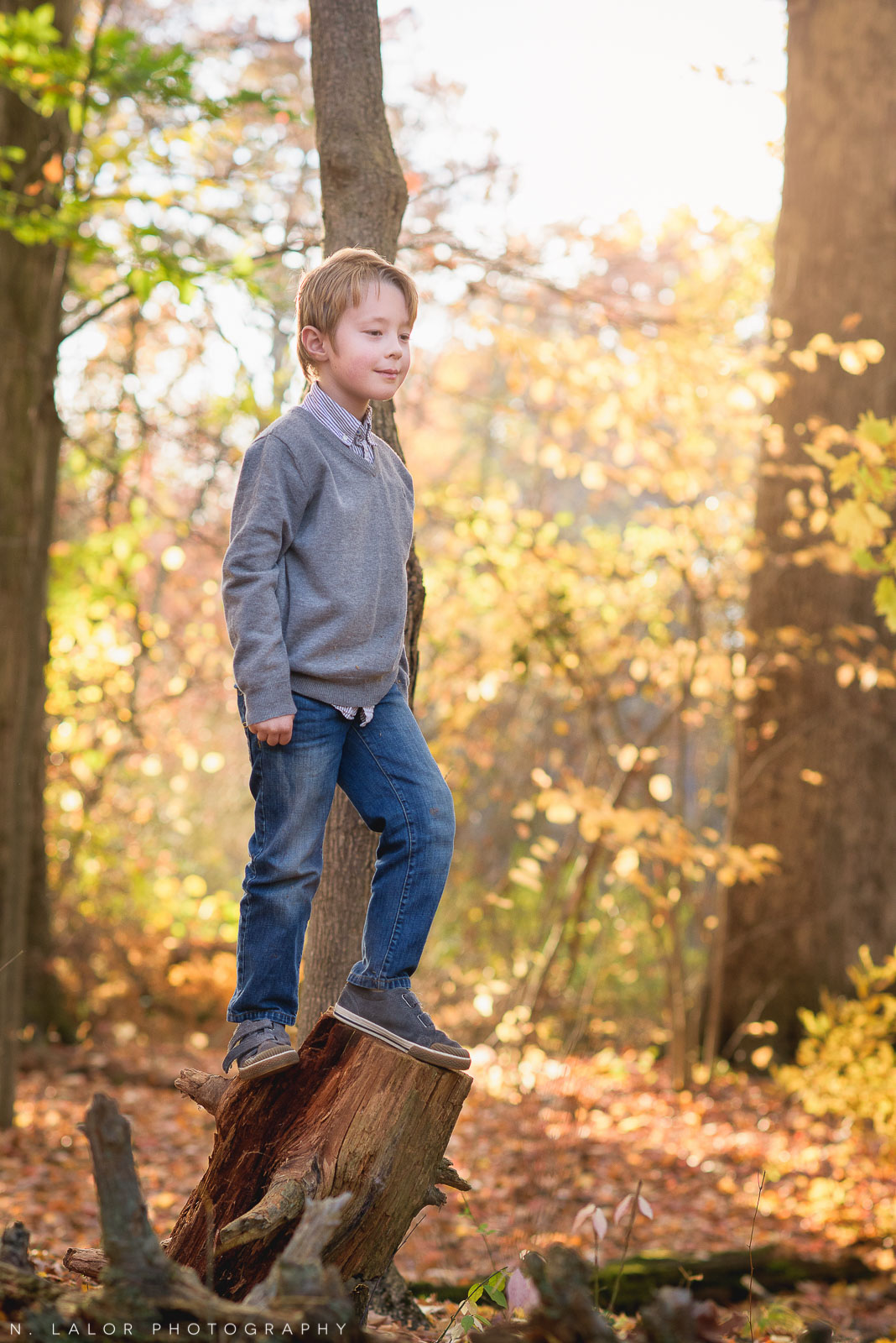 A boy exploring the woods. Lifestyle portrait by N. Lalor Photography. New Canaan Nature Center.